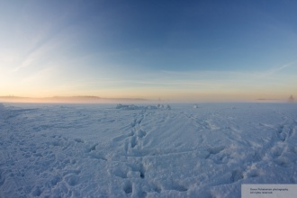 Haltiala snow5