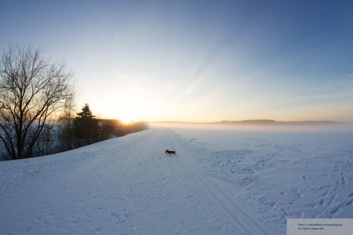 Haltiala snow6