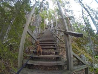 Katajavuoren portaat