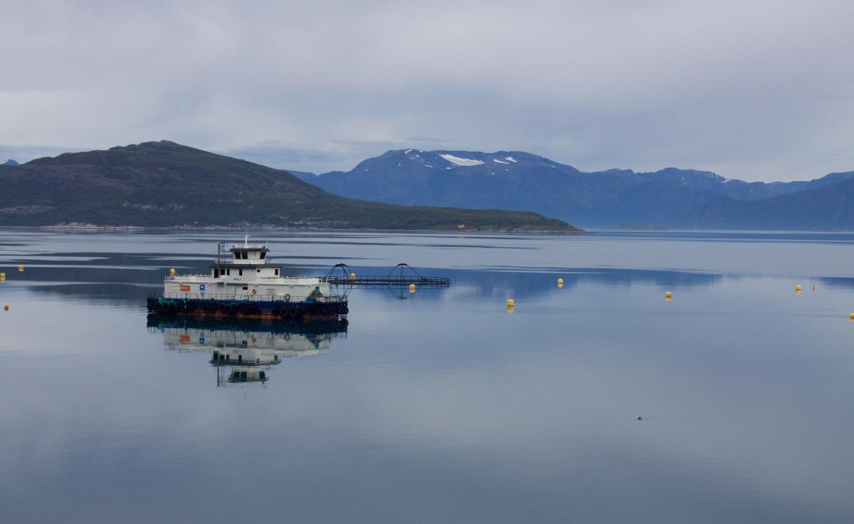 Between Nordkapp and Tromsø - an Arctic roadtrip. Part 2, Norway