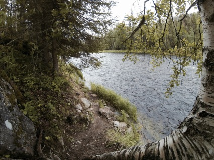 Kitka river view