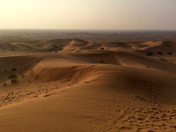 Arabian desert scenery