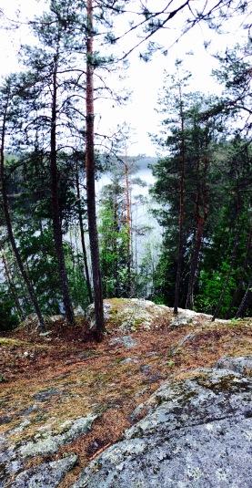 Liesjärvi, Tapolanjärvi