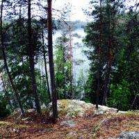 Liesjärvi National Park, Finland