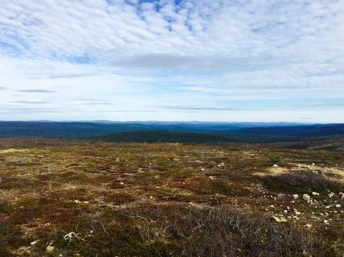 Urho Kekkosen kansallispuisto, UKK National Park, Iisakkipää