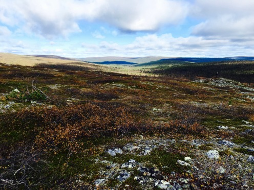 Urho Kekkosen kansallispuisto, UKK National Park